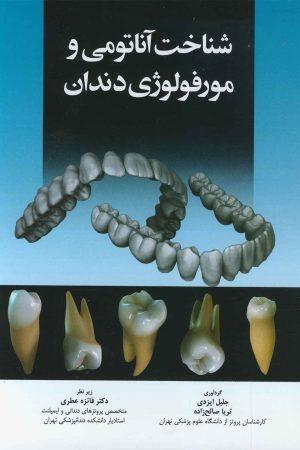 شناخت آناتومی و مورفولوژی دندان