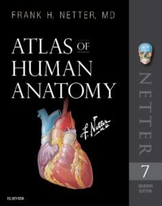 دانلود اطلس آناتومی نتر 2019 (Atlas of Human Anatomy, Frank H. Netter – 7th Edition)