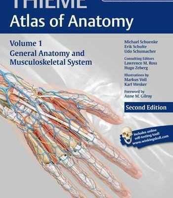 اطلس آناتومی thieme سیستم عضلانی اسکلتی