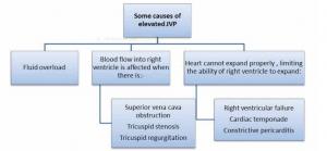 دلایل افزایش JVP (افورتلس قلب )