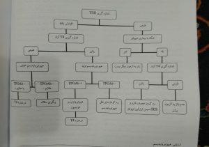 ارزیابی هیپوتیروئیدیسم (گزینه برتر داخلی غدد گوارش 98)