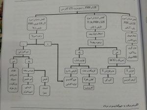 الگوریتم رویکرد به هیپوگنادیسم در مردان (گزینه برتر داخلی غدد گوارش 98)