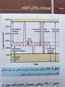 دیاگرام نشان دهنده تغییرات تنفس