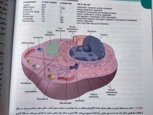 اجزای ساب سلولار اصلی ( پاتولوژی عمومی رابینز 2018 )