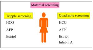 Maternal screening