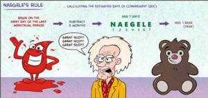 naegele rules ( افورتلس زنان 1 )