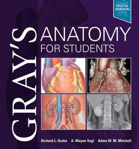 بهترین ترجمه کتاب آناتومی گری