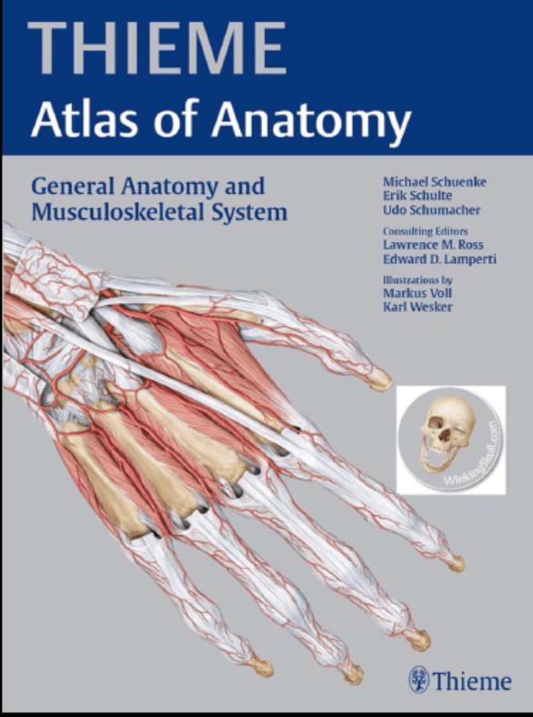 دانلود pdf اطلس آناتومی تیمه