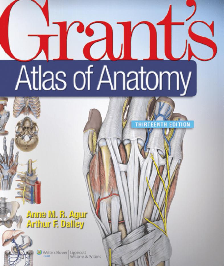 دانلود pdf اطلس آناتومی گرنت