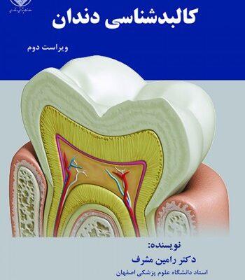 کالبدشناسی دندان